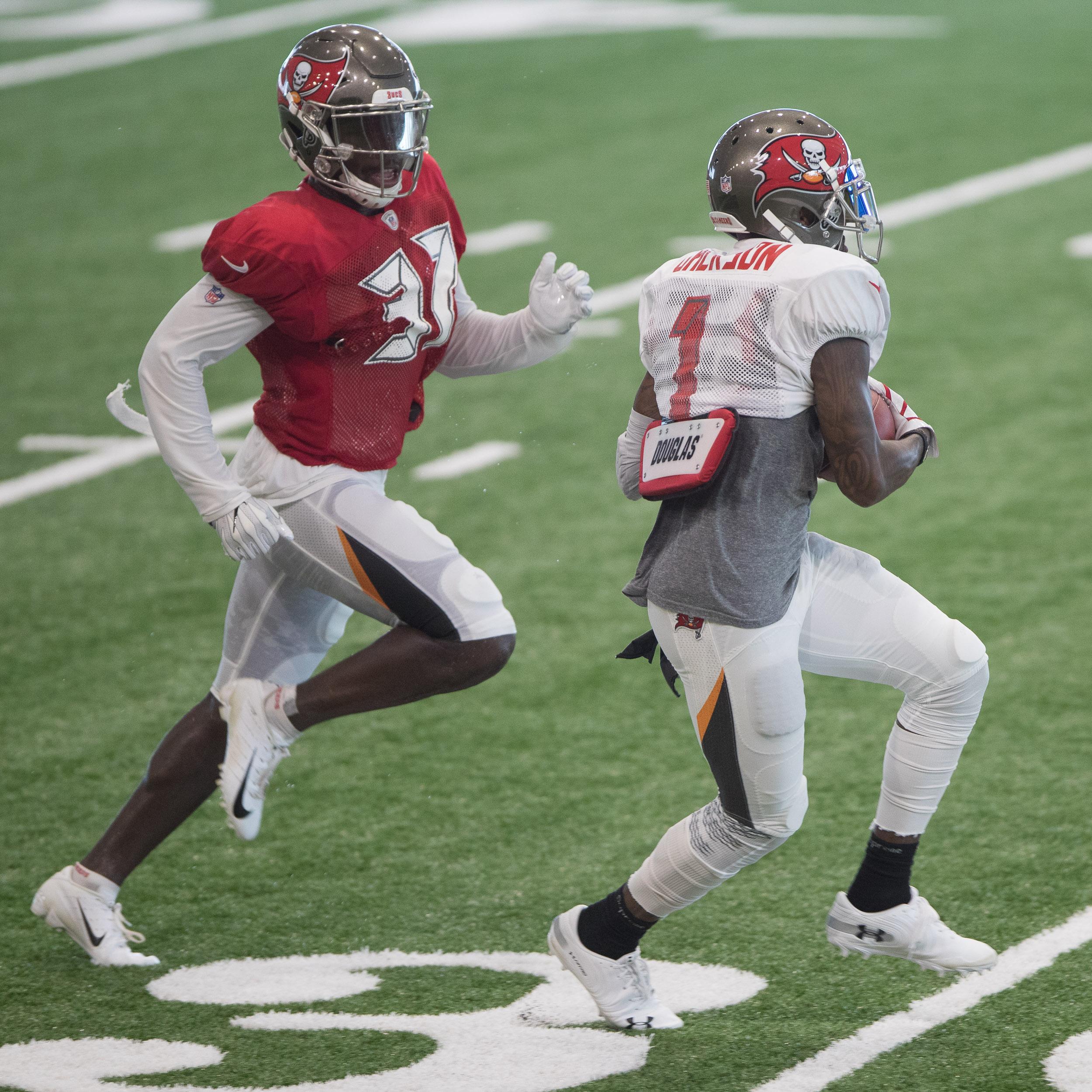 DeSean Jackson makes a catch for Bucs./STEVEN MUNCIE